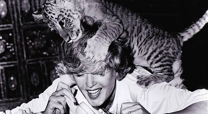 tippi hedren 1981, american actress, 1980s movies, roar, big cats, baby tiger, wildlife conservation, shambala nature preserve