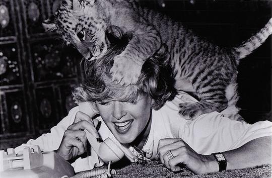 tippi hedren 1981, american actress, 1980s movies, roar,