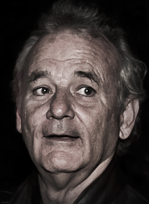 bill murray 2010, american actor, comedian, older, senior citizen