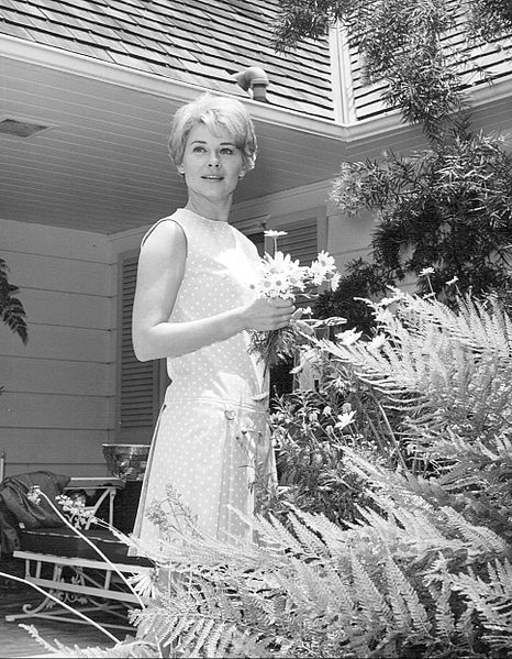 hope lange 1968, american actress, 1960s television series, 1960s tv sitcoms, the ghost and mrs muir