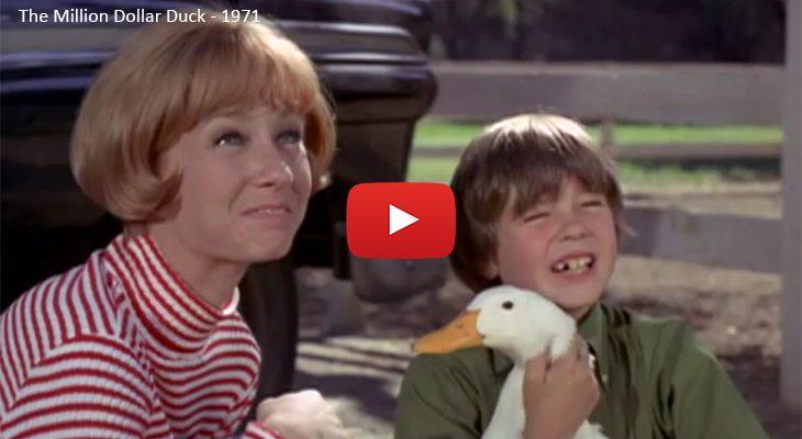 sandy duncan 1971, 1970s disney movies, 1970s comedy films, the million dollar duck