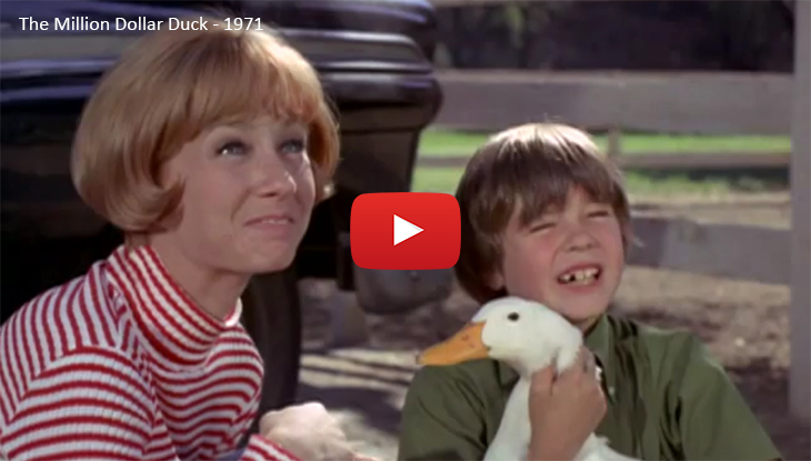 sandy duncan 1971, 1970s disney movies, 1970s comedy films, the million dollar duck