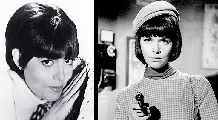 barbara feldon, 1966, 1969, american model, actress, classic television tv series, sitcom, get smart, agent 99, 1960s,