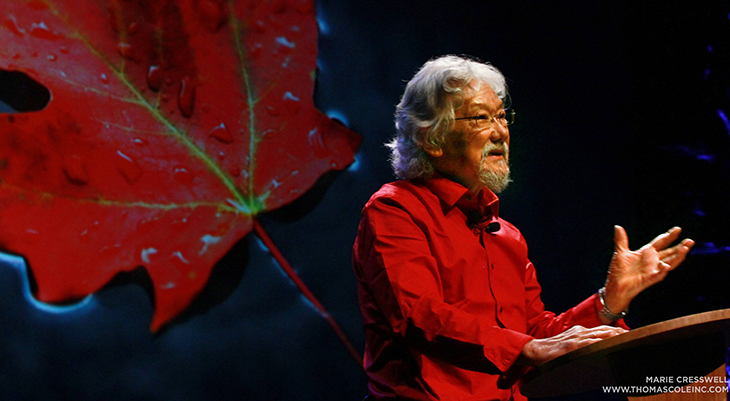 david suzuki onstage, canadian scientist, cbc tv host, the nature of things host, david suzuki older