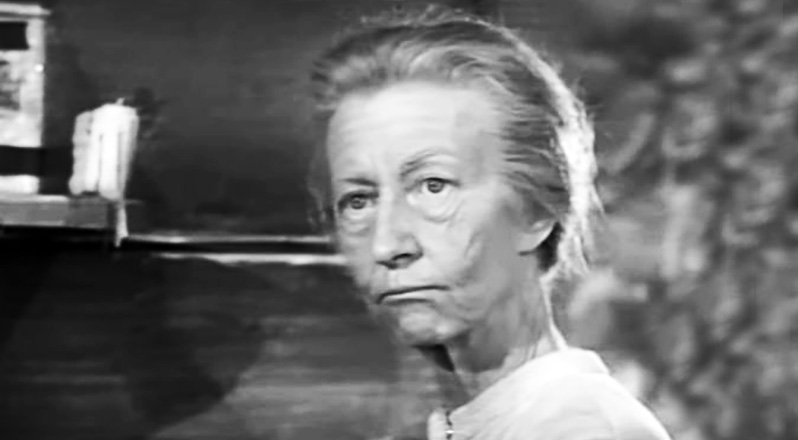 irene ryan 1962, the beverly hillbillies cast 1962, baby boomers favorite television shows, american actress, granny daisy moses, 1960s television series, 1960s tv sitcoms