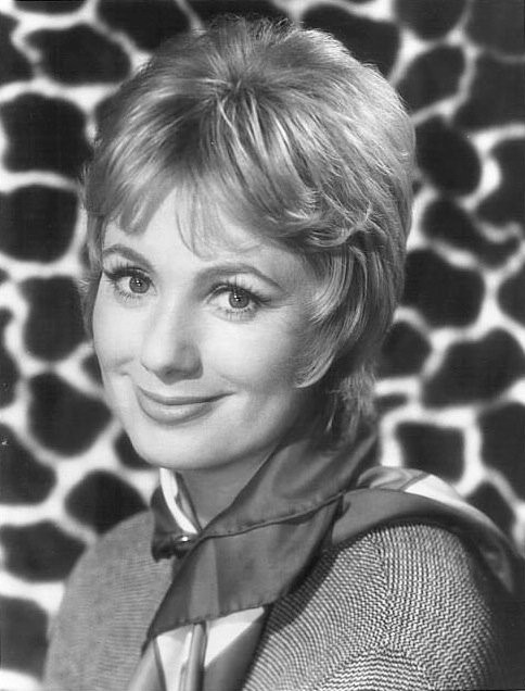 shirley jones 1970s, american actress, 1970s television series, 1970s sitcoms, the partridge family, younger