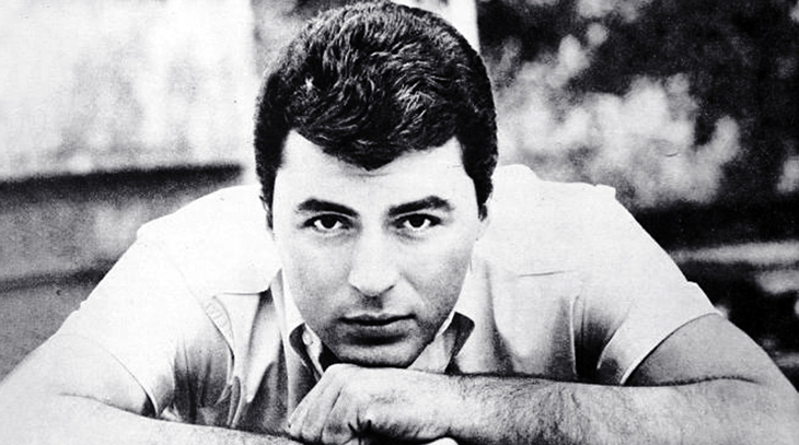 james darren, american singer, actor, director, film star, 1960s, movies, all the young men, let no man write my epitaph, the guns of navarone, teen idol