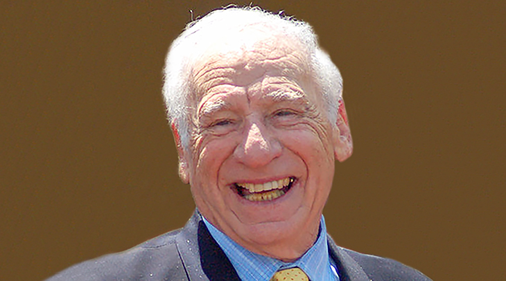 mel brooks 2010, mel brooks older, american actor, comedian, filmmaker, director, producer, senior citizen, nonagenarian