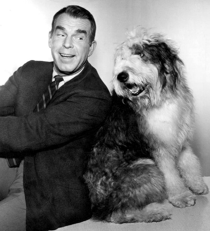 fred macmurray 1966, american actor, 1960s television series, 1960s tv sitcoms, my three sons dog tramp, steven douglas