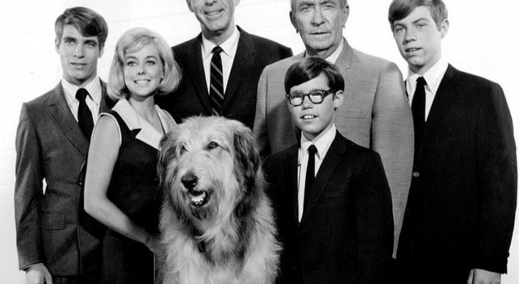 my three sons 1967 cast, fred macmurray, steven douglas, don grady, robbie douglas, stanley livingston, chip douglas, ernie douglas, barry livingston, tina cole, william demarest, uncle charley