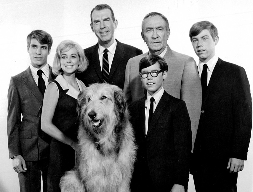 my three sons 1967 cast, fred macmurray, steven douglas, don grady, robbie douglas, stanley livingston, chip douglas, ernie douglas, barry livingston, tina cole, william demarest, uncle charley