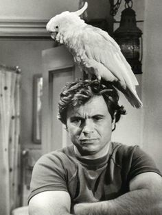 robert blake 1975, american actor, former child star, baretta, cockatoo fred, 1970s tv series, senior citizen