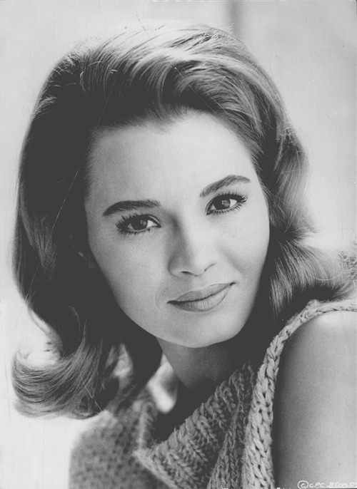 angie dickinson, early 1960s, young, brunette, american actress, movie star