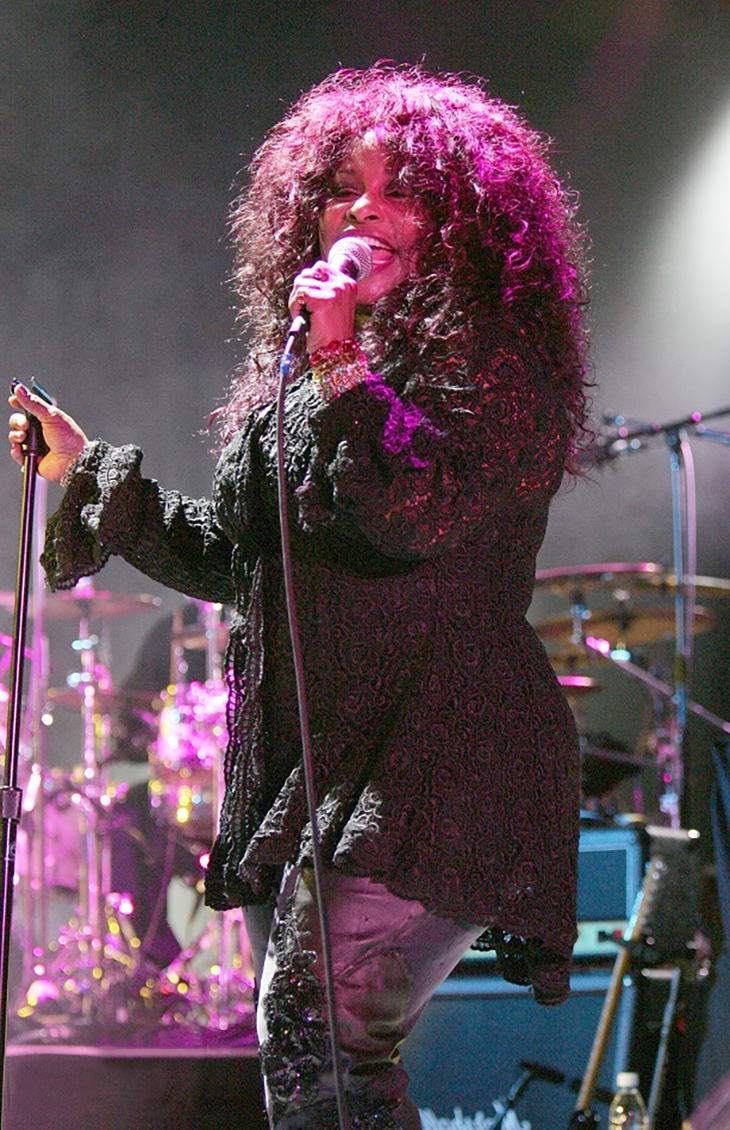 chaka khan 2006, african american rock singer, rock and roll hall of fame nominee