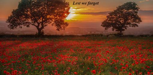 november 11th, remembrance day, veterans day, soldier, in flanders fields, poppies, major john mccrae, those who serve, remember, do not forget, lest we forget