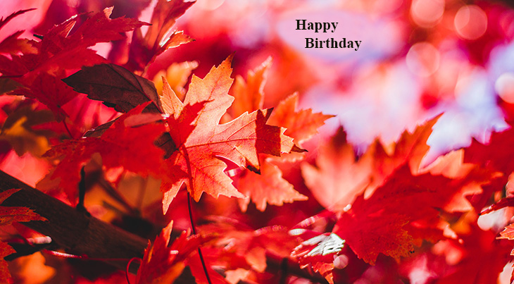 happy birthday wishes, birthday cards, birthday card pictures, famous birthdays, fall colors, autumn leaves, red, gold