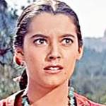 susan kohner birthday, nee susanna kohner, susan kohner 1956, american actress, 1950s movie starlet, 1950s movies, to hell and back, the last wagon, trooper hook, dino, imitation of life, the big fisherman, the gene krupa story, 1960s movies, all the fine young cannibals, by love possessed, freud, married john weitz 1964, mother of paul weitz, mother of chris weitz, octogenarian birthdays, senior citizen birthdays, 60 plus birthdays, 55 plus birthdays, 50 plus birthdays, over age 50 birthdays, age 50 and above birthdays, celebrity birthdays, famous people birthdays, november 11th birthdays, born november 11 1936
