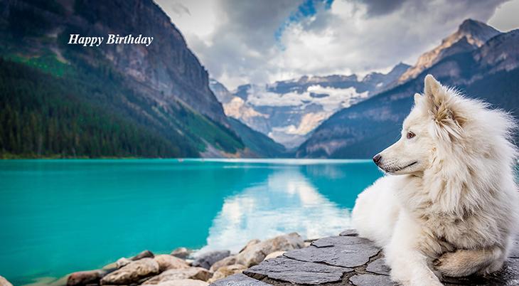 seniors birthdays, older adult birthdays, 50 plus birthdays, 55 plus birthdays, 60 plus birthdays, generation x birthdays, baby boomer birthdays, zoomer birthdays, happy birthday, senior citizens, centenarian, nonagenarian, octogenarian, septuagenarian, senior celebrity birthdays, famous people birthdays, remembering, in memory of, memorial, birthday card, birthdays on this day, nature scenery, winter scenery, white dog, white husky, mountains, green lake, glacier lake, animals