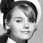 sharon farrell birthday, nee sharon forsmoe, sharon farrell 1965, american ballerina dancer, actress, 1950s movies, kiss her goodbye, 1960s movies, 40 pounds of trouble, a lovely way to die, marlowe, the reivers, 1960s television series, saints and sinners polly holloran, gunsmoke guest star, ben casey guest star, dr kildare rachel field, run for your life guest star, the man from uncle guest star, 1970s movies, the love machine, its alive, the premonition, the fifth floor, 1970s tv shows, police story guest bobbie guest star, hawaii five o detective lori wilson, insight guest star, 1980s movies, out of the blue, the stunt man, separate ways, sweet 16, lone wolf mcquade, night of the comet, cant buy me love, one man force, 1980s television shows, 1980s tv soap operas, rituals cherry lane, 1990s movies, lonely hearts, beyond desire, a gift from heaven, white cargo, timeless obsession, last chance love, 1990s daytime television series, the young and the restless florence webster,married andrew prine 1962, annulled marriage to andrew prine 1962, married john boyer 1969, divorced john boyer 1972,septuagenarian birthdays,senior citizen birthdays, 60 plus birthdays, 55 plus birthdays, 50 plus birthdays, over age 50 birthdays, age 50 and above birthdays, celebrity birthdays, famous people birthdays, december 24th birthday, born december 24 1940