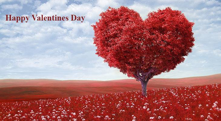valentines day, happy valentines day, valentines heart, tree of hearts, field of red flowers