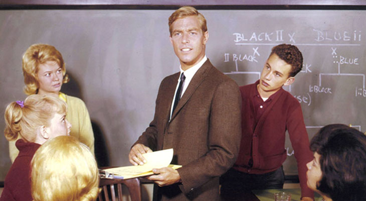 james franciscus 1960s, american actor, 1960s television series, mr novak, high school tv shows