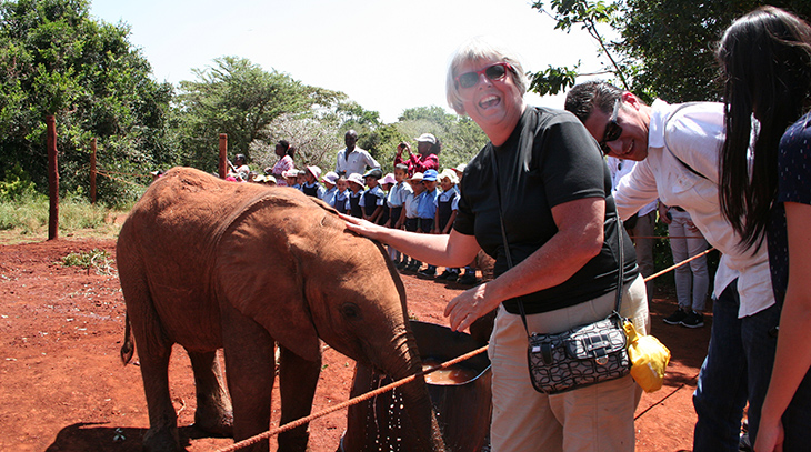 david sheldrake wildlife trust, kenya africa, baby elephants, africa wildlife conservation, elephant sanctuary, student education programs, orphan elephant calves
