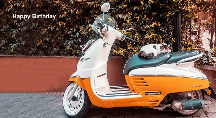 happy birthday wishes, birthday cards, birthday card pictures, famous birthdays, motorcycle, moped, cat, animals,