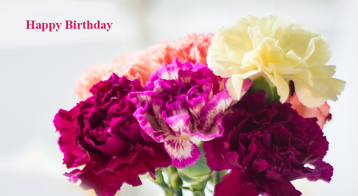 happy birthday wishes, birthday cards, birthday card pictures, famous birthdays, red carnations, pink flowers, yellow blossoms
