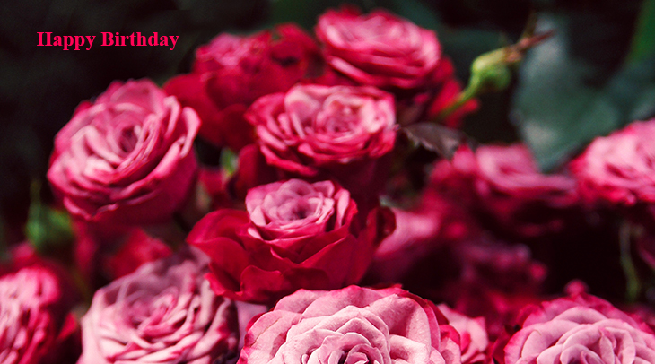 happy birthday wishes, birthday cards, birthday card pictures, famous birthdays, pink roses, red flowers, rose bouquet