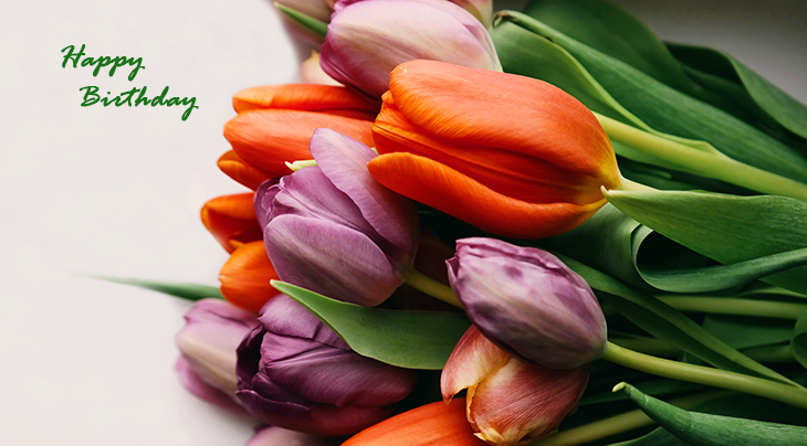 happy birthday wishes, birthday cards, birthday card pictures, famous birthdays, purple flowers, orange tulips, spring flowers