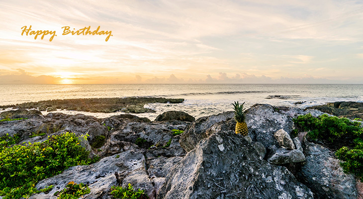 happy birthday wishes, birthday cards, birthday card pictures, famous birthdays, grand sirenis, mexico, nature scenery, ocean