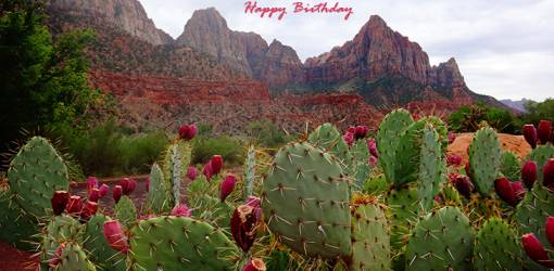 happy birthday wishes, birthday cards, birthday card pictures, famous birthdays, flowering cactus, pink flowers, zion national park, hurricane us
