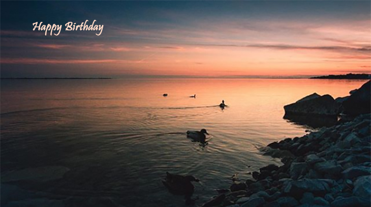 happy birthday wishes, birthday cards, birthday card pictures, famous birthdays, wild birds, kingston, lake ontario, sunset