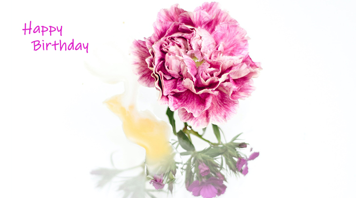 happy birthday wishes, birthday cards, birthday card pictures, famous birthdays, mixed flowers, pink carnation