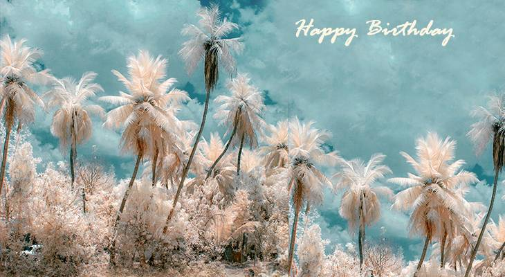 happy birthday wishes, birthday cards, birthday card pictures, famous birthdays, nature scenery, tamil nadu, india, palm trees