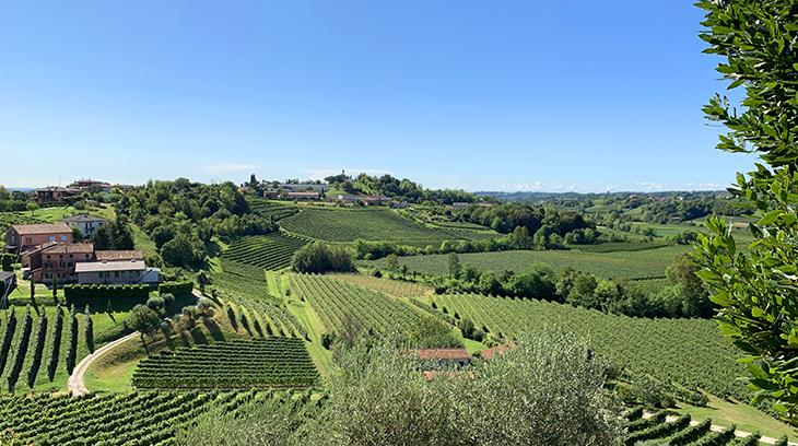 la vigna di sarah winery, vittorio veneto, treviso italy, prosecco wine region, prosecco valdobiadene docg vineyards