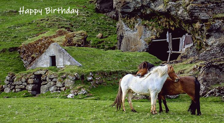 happy birthday wishes, birthday cards, birthday card pictures, famous birthdays, icelandic horses, nature, scenery, wild animals