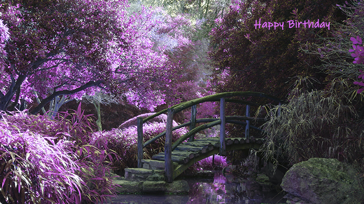 happy birthday wishes, birthday cards, birthday card pictures, famous birthdays, purple flowers, bridge, lilac, lavender