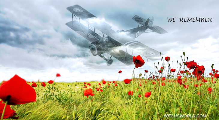 remembrance day, veterans day, we remember, lest we forget, red flowers, poppies, poppy flower, red poppy field, biplane, world war i, wwi, world war 1, airplane, salmson, lendkreis borde, germany