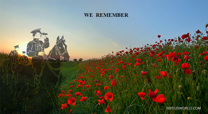 remembrance day, veterans day, we remember, lest we forget, red flowers, poppies, poppy flower, red poppy field, world war i, wwi, world war 1, black horse, cavalry, canadian mounted rifles