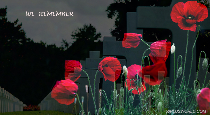 remembrance day, veterans day, we remember, lest we forget, white crosses, red flowers, poppies, poppy flower