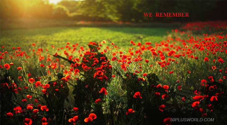 remembrance day, veterans day, we remember, lest we forget, red flowers, poppies, poppy flower, red poppy field, world war i, wwi, world war 1, troops, soldiers, battle of the somme