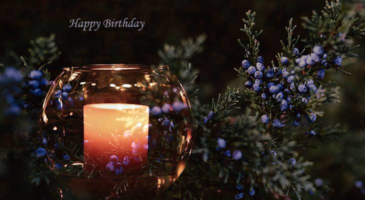 happy birthday wishes, birthday cards, birthday card pictures, famous birthdays, blue winterberries, evergreens, candle, glass, christmas