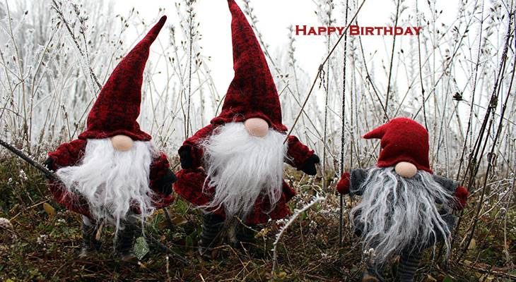 happy birthday wishes, birthday cards, birthday card pictures, famous birthdays, garden gnomes, holiday, christmas, red, elves