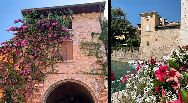 old sirmione buildings, sirmione flowers, sirmione old town, scaligero castle wall, northern italy plants, travel to italy, lombardy, brescia, italian lakes district, bougainvillea, pink flowers