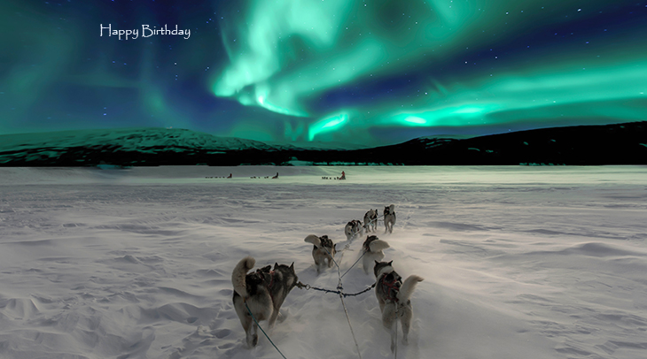 happy birthday wishes, birthday cards, birthday card pictures, famous birthdays, sled dogs, huskies, northern lights, norway