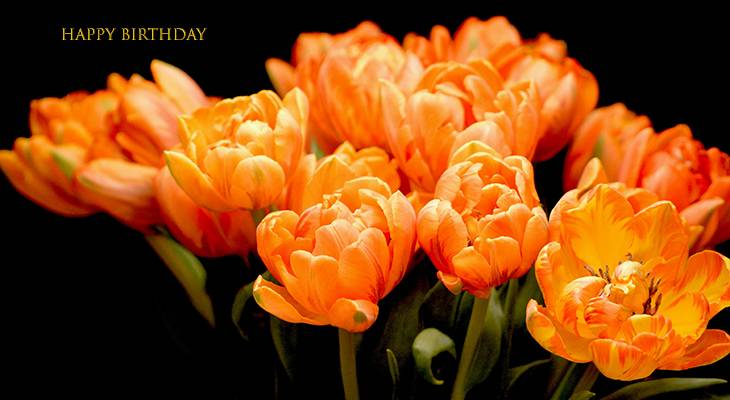 happy birthday wishes, birthday cards, birthday card pictures, famous birthdays, orange, flowers, tulips, spring bulbs