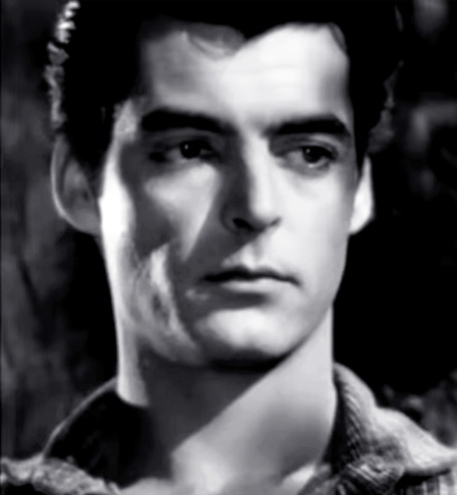 rory calhoun, american actor, classic movies, 1947 films, the red house, 1940s movies