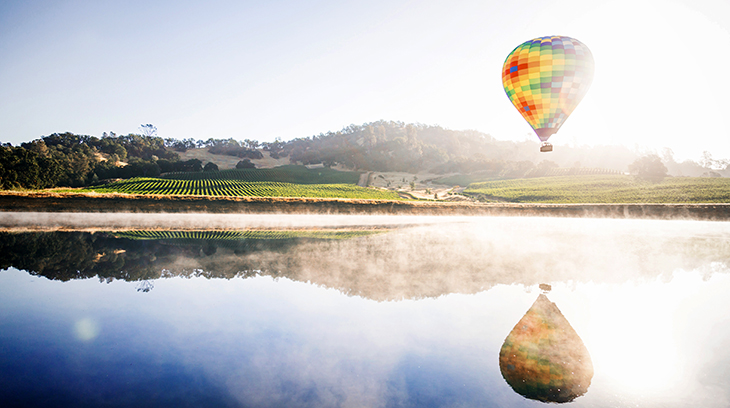 top wine regions, wines, red, white, napa valley, california, wineries, vineyards, travel, wine tours, hot air ballooning