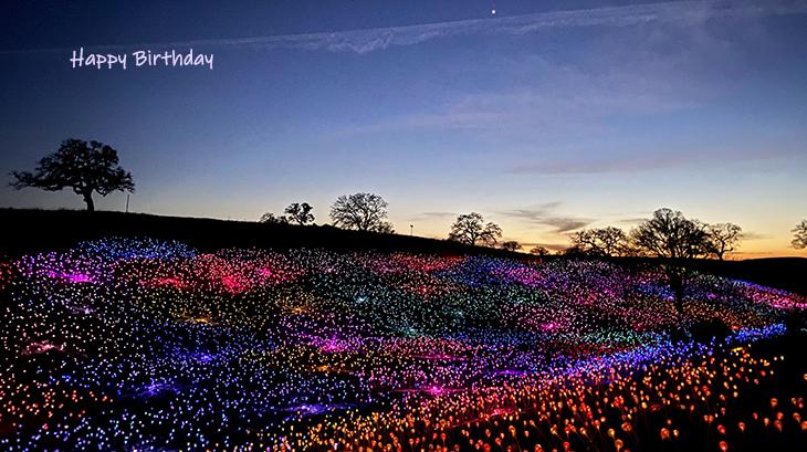 happy birthday wishes, birthday cards, birthday card pictures, famous birthdays, field of light, sensorio art installation, pasa robles, california